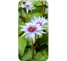 Blue water lily iPhone Case/Skin
