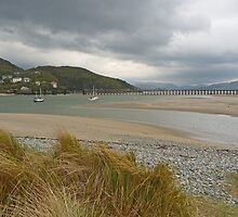 Low Tide at Mawddach by Kat Simmons