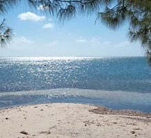 Cayman Kai Beach by Jaime Pharr