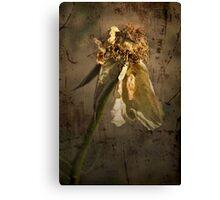 Rust 'n Roses ~ #10 Canvas Print