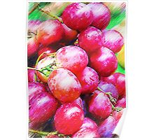 Plums In Pencil Poster