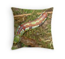 Alien~ Variable oak leaf Prominent (lochmaeus mariteo) Throw Pillow