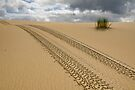 Tracks in Sand by Werner Padarin