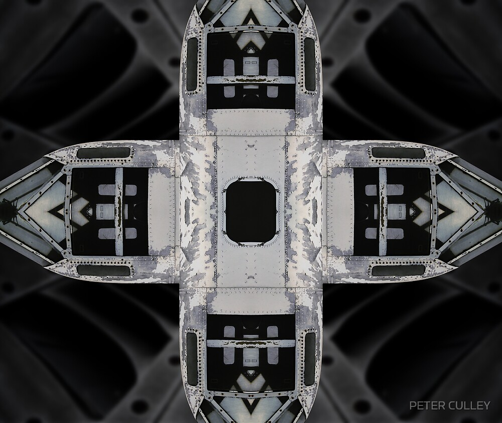 Aviabstract Pod by PETER CULLEY