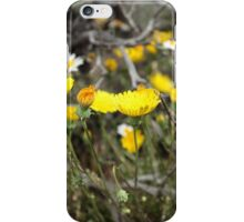 High Desert wild Flowers 2 iPhone Case/Skin