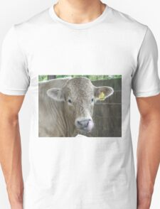 Cheeky Cow T-Shirt