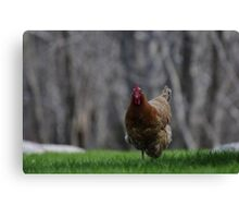 She is running Canvas Print