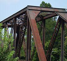 The bridge stands alone by colojuno