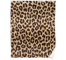 Leopard Print Poster