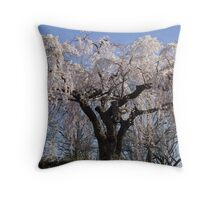 Spring in D.C. Throw Pillow