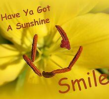 Have Ya Got A Sunshine Smile? by Stephen Thomas