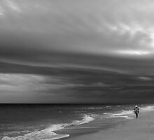 Stormy Gulf by Barry Goble
