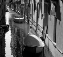 The Light - Venice Sticker