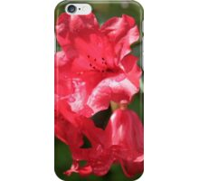 Red Rhododendron Flowers iPhone Case/Skin