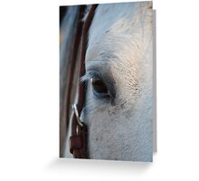 Through the Eye of a Horse Greeting Card
