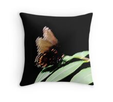 Quick Stop Butterfly Throw Pillow