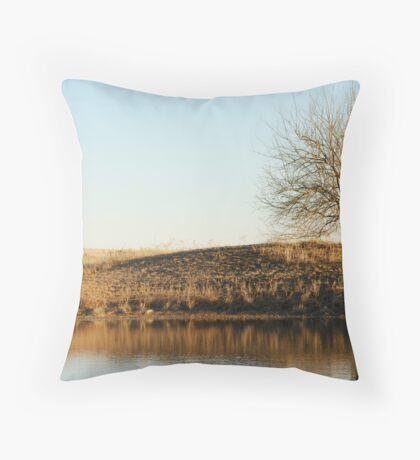 Lone Tree by Pond in Autumn Throw Pillow