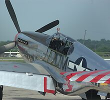P-51 Two passenger Mustang by TeeMack