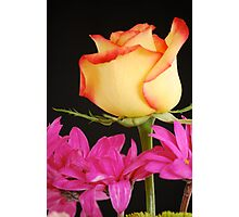 Yellow Rose with Pink Flowers Photographic Print
