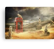 Meerkat Network Canvas Print