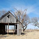 Old Barn by Suz Garten