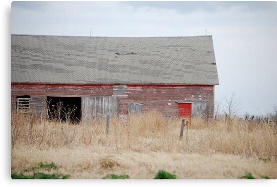 Rare Red Barn in Kansas by Suz Garten