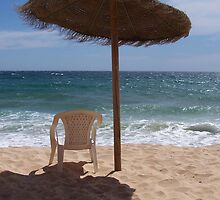 Vale do Lobo Beach by Wayne Gerard Trotman