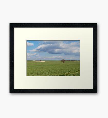 Big Sky and Kansas Wheat Framed Print