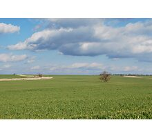 Big Sky and Kansas Wheat Photographic Print