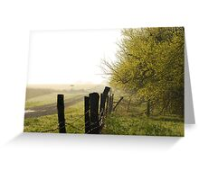 Misty Country Morning in Kansas Greeting Card