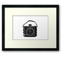 Baby Brownie Framed Print