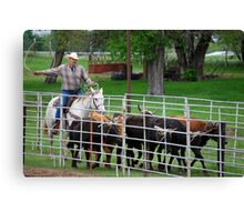 Herding the Steer Back to the Pen Canvas Print