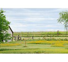 Kansas Country Solitude Photographic Print