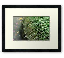 mondo wall Framed Print