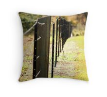 star picket fence #2 Throw Pillow