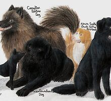 Canadian Dog Breeds by Toru