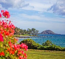 Makena Landing View  by Angelina Hills