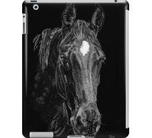 Curious Bay iPad Case/Skin
