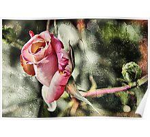 Rust 'n Roses Poster