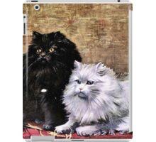 Persian Cats Painting iPad Case/Skin