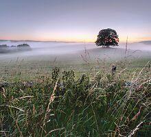 A Yorkshire Dales Dawn by SteveMG