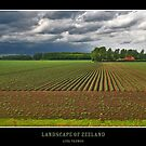 Landscape of Zeeland by Adri  Padmos