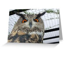 If Looks Could Kill! Greeting Card