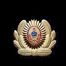 USSR officer cap badge by yurix