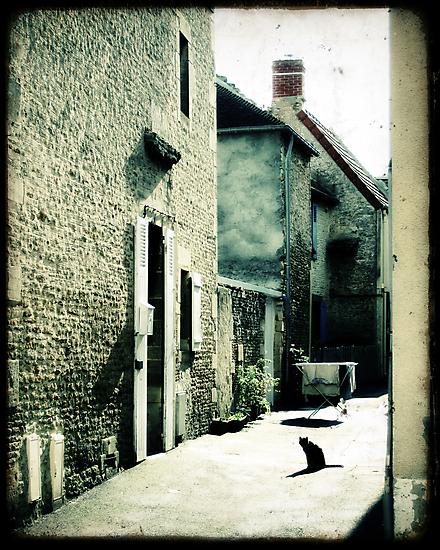 Le Chat dans la Ruelle by Marc Loret