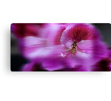 Living Motion  Canvas Print