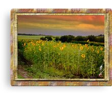 Alberta sunset sunflowers Canvas Print