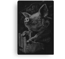 Pig in black. Canvas Print