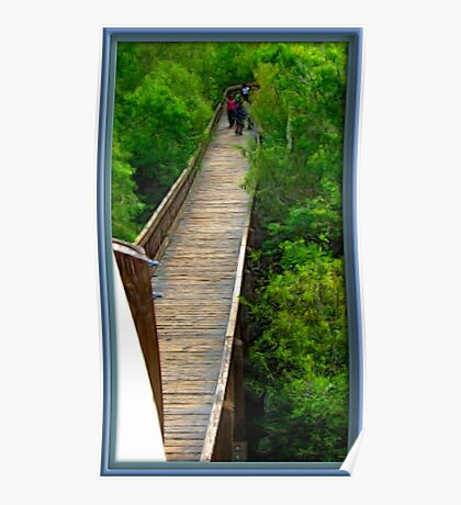 Boardwalk Through The Trees Poster