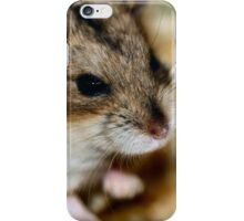 Siberian Hamster iPhone Case/Skin